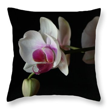 Moth Orchid 1 Throw Pillow by Marna Edwards Flavell