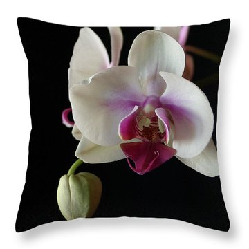 Moth Orchid 2 Throw Pillow by Marna Edwards Flavell