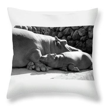 Mother And Baby Hippos Throw Pillow
