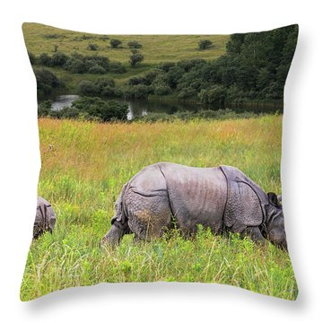 Mother And Baby Rhinos Throw Pillow
