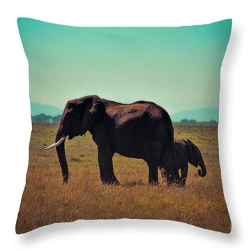 Throw Pillow featuring the photograph Mother And Child by Karen Lewis