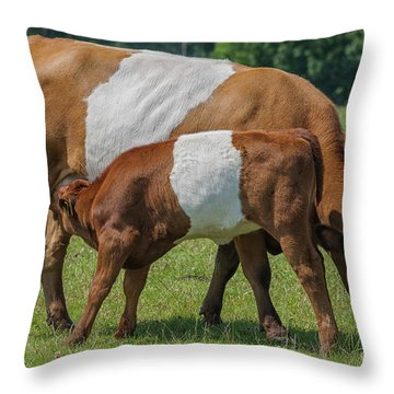 Throw Pillow featuring the photograph Mother And Child by Patricia Hofmeester