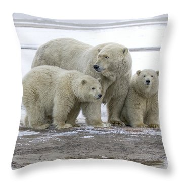 Mother And Cubs In The Arctic Throw Pillow