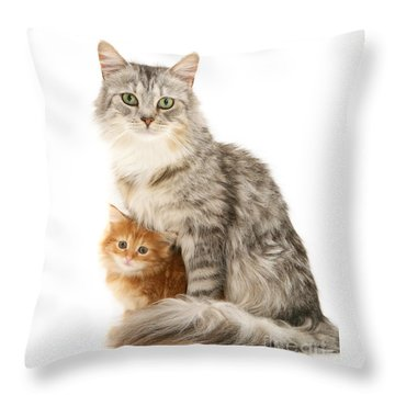 Mother Cat And Ginger Kitten Throw Pillow