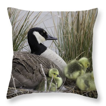 Mother Goose Throw Pillow by Jeannette Hunt