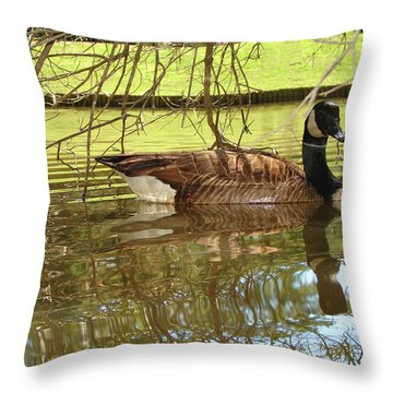 Throw Pillow featuring the photograph Mother Goose by Laura Brightwood