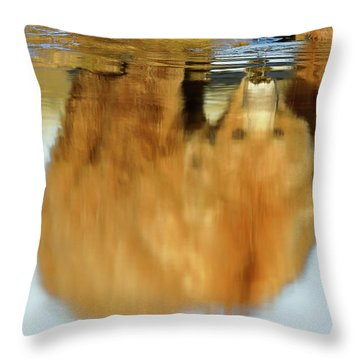 Mother Grizzly Reflection Throw Pillow