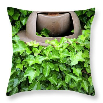 Mother Nature Most Always Wins Throw Pillow