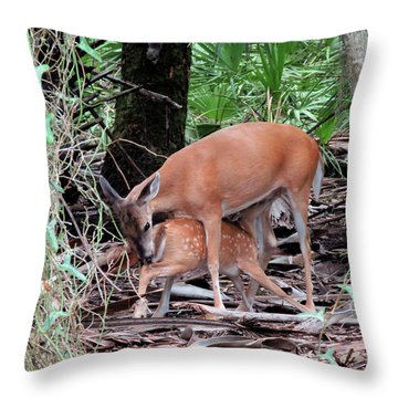 Mother's Care Throw Pillow by Rosalie Scanlon