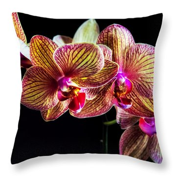 Mothers' Day Orchid Throw Pillow