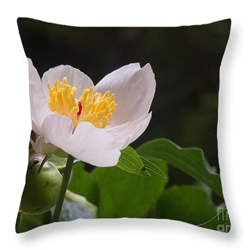 Mothers Day Peony Throw Pillow