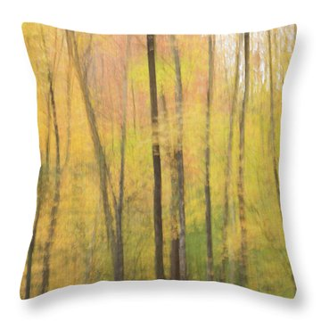 Motion In Color Throw Pillow