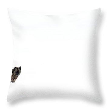 Mottled Throw Pillow