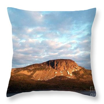 Throw Pillow featuring the photograph Mottled Sky Of Late Spring by Barbara Griffin