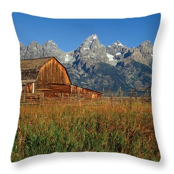 Moulton Barn Pano View Throw Pillow