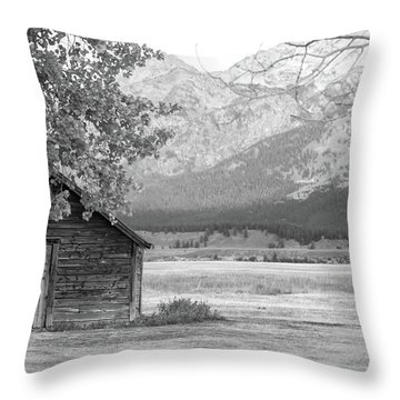 Throw Pillow featuring the photograph Moulton Homestead - Granary by Colleen Coccia