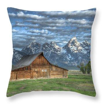 Moulton Morning Throw Pillow