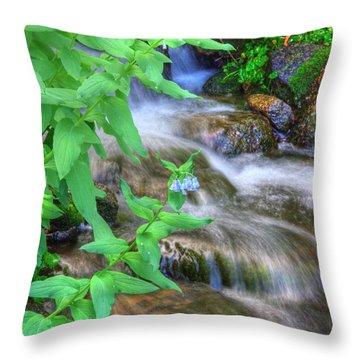 Mounain Bluebells Throw Pillow