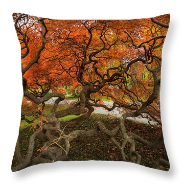 Mount Auburn Cemetery Beautiful Japanese Maple Tree Orange Autumn Colors Branches Throw Pillow