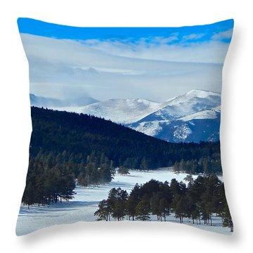 Buffalo Park Throw Pillow