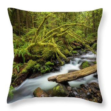 Mount Hood Creek Throw Pillow