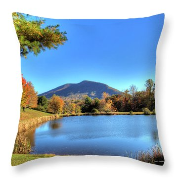 Mount Jefferson Reflection Throw Pillow by Dale R Carlson
