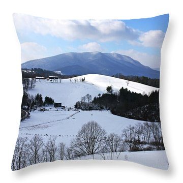 Mount Jefferson Winter Throw Pillow by Dale R Carlson