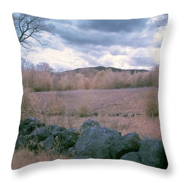 Mount Monadnock In Infrared Throw Pillow by Tom Singleton