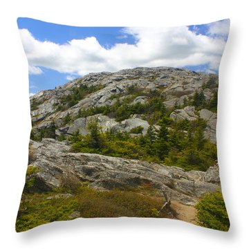 Mount Monadnock Summit From Pumpelly Trail Throw Pillow
