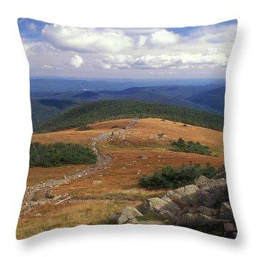 Mount Moosilauke Summit Throw Pillow