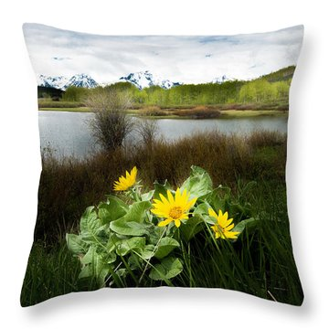 Mount Moran Spring Throw Pillow