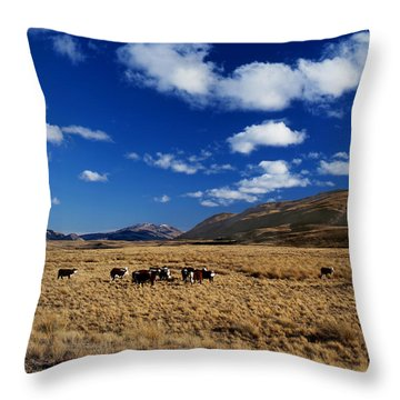 Mount Nicholas Station New Zealand Throw Pillow