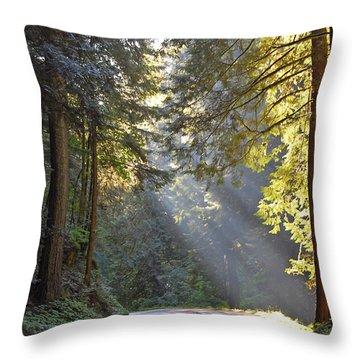 Mount Rainier At Nisqually Throw Pillow