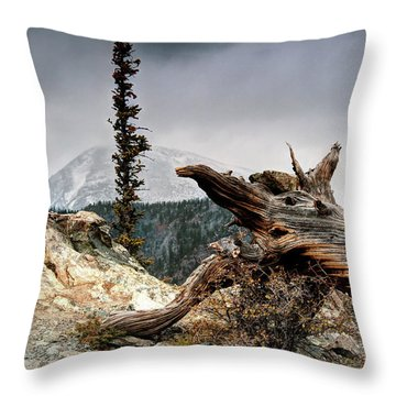 Throw Pillow featuring the photograph Mount Royal by Jim Hill
