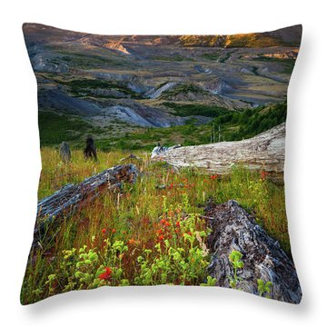 Mount Saint Helens Throw Pillow by Inge Johnsson