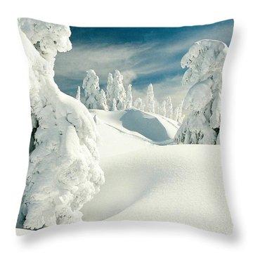 Mount Seymour Throw Pillow