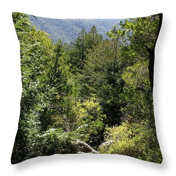 Throw Pillow featuring the photograph Mount Tamalpais Forest View by Ben Upham III