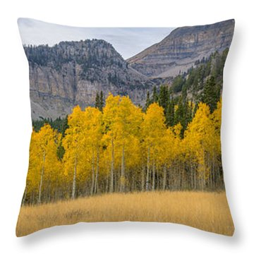 Mount Timpanogos Meadow In Fall Throw Pillow