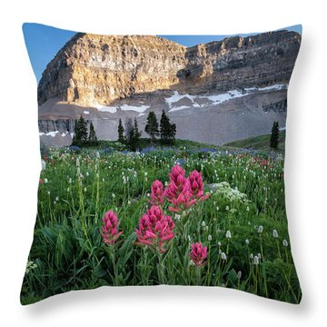 Mount Timpanogos Wildflowers Throw Pillow