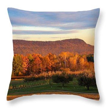 Mount Tom Foliage View Throw Pillow