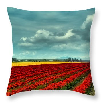 Mount Vernon Tulip Fields Throw Pillow