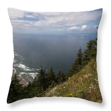 Mountain And Beach Throw Pillow