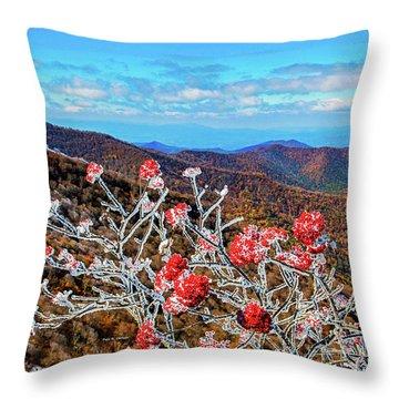 Mountain Ashe Throw Pillow
