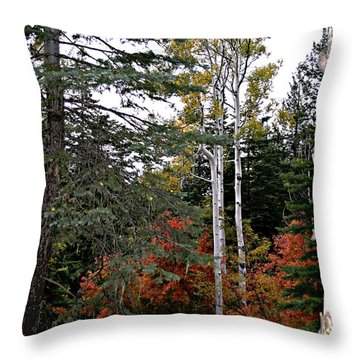 Mountain Autumn Throw Pillow