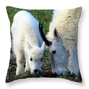 Mountain Baby Throw Pillow