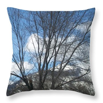 Throw Pillow featuring the photograph Mountain Backdrop by Jewel Hengen