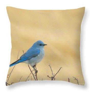 Mountain Blue Bird Throw Pillow