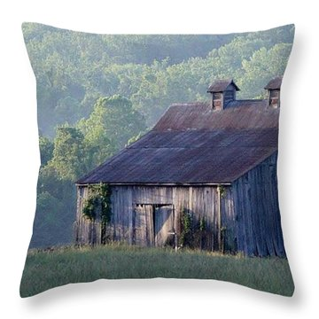 Mountain Cabin Throw Pillow