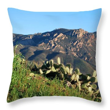 Mountain Cactus View - Santa Monica Mountains Throw Pillow