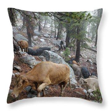 Mountain Climbing Throw Pillow